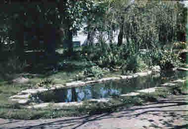 Näckrosdammen vid Rostad 1940