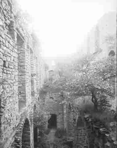 Borgholms slottsruin